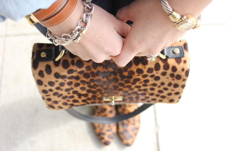 Overhead shot a cool leopard bag and leopard shoes