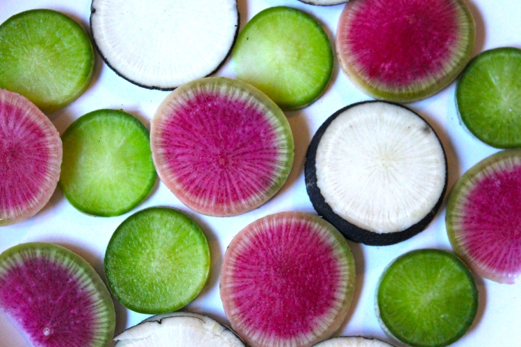 Slices of Colorful Radishes from the farmers' market for our vegetarian month